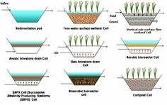 Constructed Wetlands - Working Ground