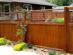 wood and hog wire fence