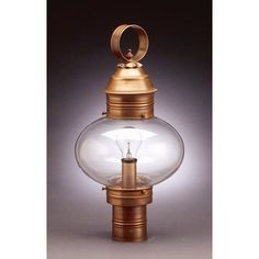 Northeast Lantern Onion 1 Light Lantern Head Finish: Antique Copper, Shade Type: Frosted