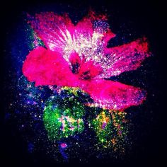 Cosmic Flower  - SM