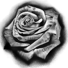Black and Gray Rose Tattoo Design