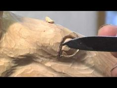 Carving a Horse's Head - Wood Carving Teaching DVD by Ian Norbury (Clip)