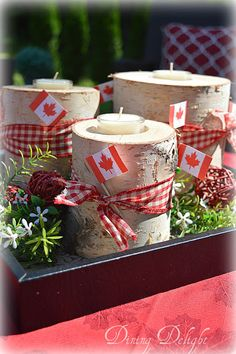 With Canada Day fast approaching, I wanted to add some simple decor to my backyard area to reflect this special holiday. Canada Day Centrepiece, Visit Canada, Canada 150, Canada Day Fireworks, Canada Day Crafts, Canada Day Party, Backpacking Canada, Canadian Things, Summer Centerpieces