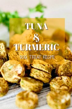 Gluten Free Tuna & Turmeric Dog Treat Recipe - Gluten Free Tuna & Turmeric Dog Treat Recipe This tasty tuna and turmeric dog treat recipe makes healthy, nutritious and high-value treats. Perfect for training or everyday yums. Dog Cookie Recipes, Easy Dog Treat Recipes, Homemade Dog Cookies, Dog Biscuit Recipes, Homemade Dog Food, Healthy Dog Treats, Dog Food Recipes, Doggie Treats, Organic Dog Treats