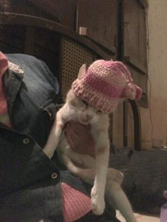 Gorrita crochet para mascotas