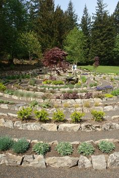 Flower Bed Labyrinth in Oregon