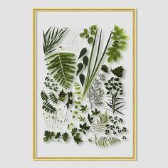 Would love to try and make my own. Still Acrylic Wall Art - Spring Botanicals #westelm