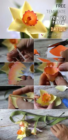 Diy zinnias flower from printer paper free template so simple how to make paper daffodil flower out of printer paper free template mightylinksfo