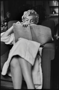 MARILYN MONROE, NEW YORK, 1956 by ELLIOTT ERWITT (Born 1928) - photograph for sale from Beetles & Huxley