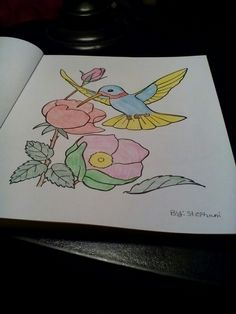 Coloring Book Pages Sheets