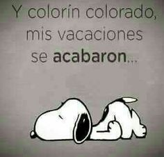 Vacaciones Mr Wonderful, Funny Inspirational Quotes, Charlie Brown And Snoopy, Graphic Quotes, Snoopy And Woodstock, Teacher Quotes, Spanish Quotes, Quotable Quotes, Dog Mom