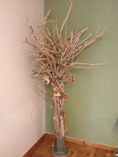 Sea wood tree
