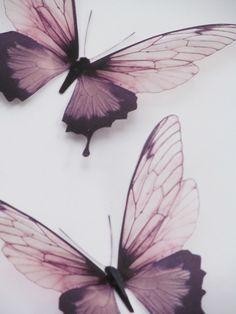 3 Luxury Amazing in Flight Butterflies 3D Butterfly Wall Art                                                                                                                                                      More