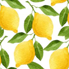 Faux Stone Peel and Stick Wallpaper Easy Watercolor, Watercolor Drawing, Watercolor Flowers, Painting & Drawing, Watercolor Paintings, Lemon Watercolor, Plant Illustration, Watercolor Illustration, Lemon Art