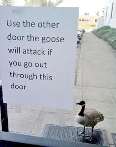 This type of bullying MUST stop!!!  (via funnysigns.net)