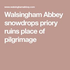 Walsingham Abbey snowdrops priory ruins place of pilgrimage