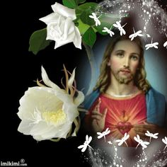 Jesus Pictures, Inspirational Thoughts, Southern Style, Picture Quotes, Christ, Prayers, Blessed, Lord, Amazing