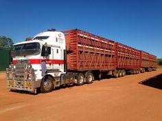Now, thats a fucking long load. 2 decks per trailer, and most drivers only put around 30 cattle per deck. So in this case, there would be roughly 240 or so cattle.