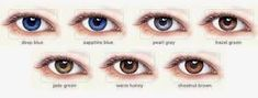 Beauty Buzz: Using Make-up Shades & Colored Contact Lenses To Embellish Your Eyes - Inspirations and Celebrations Shades Of Brown Eyes, Shades Of Blue, Blue Eyes, Eye Color Chart, Eye Chart, Colored Contacts, Blue Pearl, 2 Colours, Green Colors
