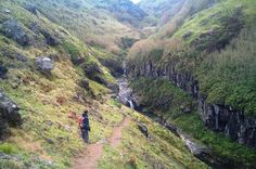 Walking Tour: Ribeira Funda and Furnas from Ponta Delgada 									This hike takes you to the north coast of the island and offers you contrasting landscapes. It follows under dense vegetation, then along running streams and opens for amazing sea views, allowing you to see the best of everything. You will also have a chance to swim at  Praia da Viola beach and, in the afternoon, you will go to Furnas. 									After meeting in Ponta Delgada, you will start off on your day...