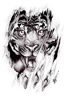 Tattoo drawing designs for men tiger tattoo design on library tattoo designs fox wedding decorations in spanish Detailliertes Tattoo, Tattoo Hals, Chest Tattoo, Tattoo Drawings, Lotus Tattoo, Pencil Drawings, Future Tattoos, New Tattoos, Tatoos