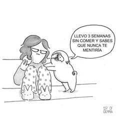 situaciones que toda madre de un perro tiene que vivir 6