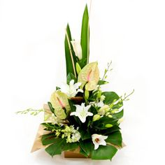 Thinking of You - A majestic display of White Oriental lillies, Anthiriums, Orchids, backed off with fine Folliage, Monstera Leaves, Gymea Leaves and sticks make this the most elegant arrangement.
