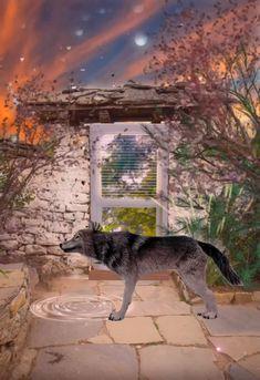 Ghost Rider Wallpaper, Good Night Wallpaper, Big Bad Wolf, Motion Design, Cat Love, Motion Graphics, Animals Beautiful, Allah Names, Animation