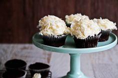 Chocolate Hummingbird Cup Cakes.