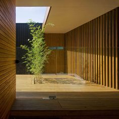 The Narrabeen House by Choi Ropiha Figherai in Australia