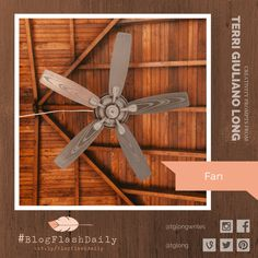 Today's creativity prompt is FAN. prompts are provided every weekday by author Terri Giuliano Long. Writing Art, Prompts, Ceiling Fan, Art Photography, Creativity, Blog, Decor, Fine Art Photography, Decoration