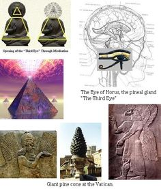The Pineal Gland: Crystal Transducer