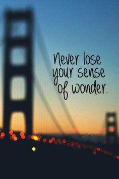 never lose your sense of wonder = никогда не теряй своего чувства удивления