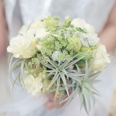Succulent bouquet with roses, like the star like succulents.
