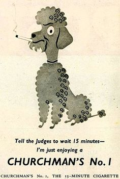 My poodle would never! But I love the illustration. Vintage Dog, Vintage Humor, Vintage Posters, Weird Vintage, Funny Vintage, Vintage Stuff, Diesel Punk, Funny Sports Pictures, Funny Photos