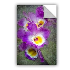 Irises by David Kyle Art Appeelz Removable Wall Mural