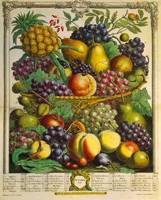 Fruits of the Season - Winter by Robert Furber - art print from King & McGaw