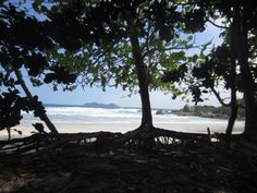 Praia Lopes Mendes - Ilha Grande