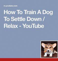 Dog Obedience Training East Texas Dogtraining And Dogcare Dog