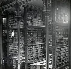 Tente não se apaixonar pelas 27 bibliotecas mais lindas do mundo