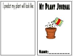 Plant Journal, mothers day activities, and lots of sight word ideas---KINDERGARTEN