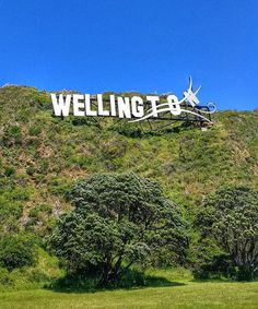 sign Wellington New Zealand Wellington New Zealand, Living In New Zealand, British Isles, Travel Guide, Sign, Travel Guide Books, Signs, Board