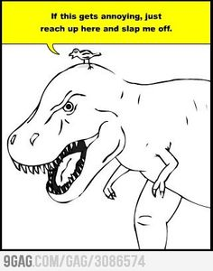 Bird vs T-Rex so not fair!  @Amy Clark