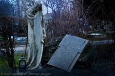 Zentralfriedhof at Vienna 1 by iconicarchive on DeviantArt