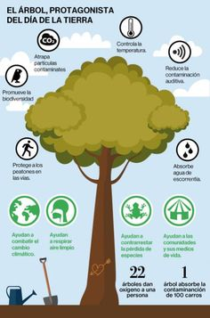 dia internacional de los bosques infografia - Google Search Spanish Posters, Forests, Infographic, Trees, Google, Movie Posters, Earth Day, International Day Of, Infographics