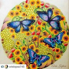 Que borboletas divinas! By  @crislopez745  #milliemarotta #animalkingdom #butterfly #livrosdecolorir #desenhoscolorir #borboletas #reinoanimal #reinoanimaltop #reinoanimalolivro #reinoanimallivro #mandala