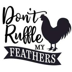 Silhouette Design Store: Don't Ruffle My Feathers Silhouette Design, Silhouette Files, Sign Quotes, Funny Quotes, Stencil Templates, Stencils, Silhouette Cameo Tutorials, Cricut Craft Room, Cricut Explore Air