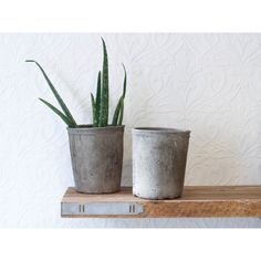 Aged Plant Pot Grey ($12) ❤ liked on Polyvore featuring home, outdoors, outdoor decor, colored flower pots and house plant pots
