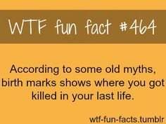 I must have experienced several shots to the head, an arm amputation, and a sword to the thigh...I was awesome! True Facts, Funny Facts, Wtf Fun Facts, Random Facts, Crazy Facts, Random Stuff, Random Things, Funny Things, Psychology Facts