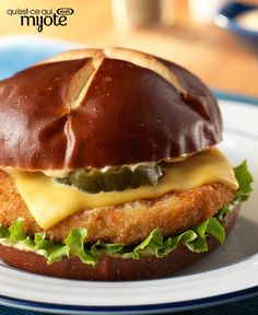 Heat up the kitchen with this Spicy Chicken Sandwich recipe. If you love spicy food, this spicy chicken sandwich recipe is perfect for you. Spicy Chicken Sandwiches, Chicken Sandwich Recipes, Spicy Recipes, Dog Food Recipes, Easy Recipes, Dinner Recipes, Sandwich Fillings, Breaded Chicken, Mets